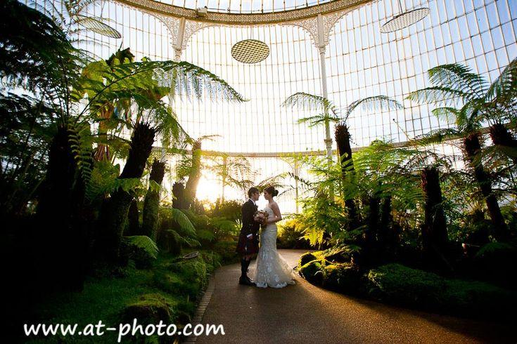 Wedding Photos Taken At Glasgow Botanic Garden, Lovely Backlight | I Said  Yes. | Pinterest | Church Wedding, Wedding Couples And Wedding
