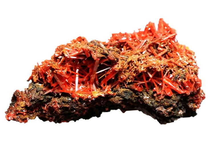 Crocoite from Adelaide Mine, Dundas Mineral Field, Zeehan District, TAS