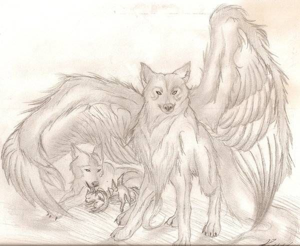 88 best Wolf with wings images on Pinterest   Wolves, Wolf ...