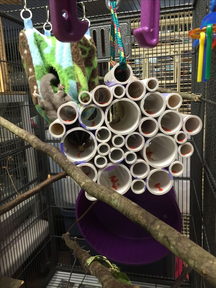 Pvc Pipe Cluster Filled With Applesauce And Treats For