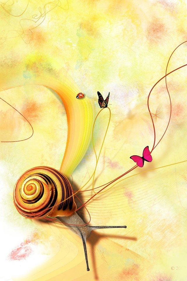 Cute Snail Wallpaper for iPhone 5S.