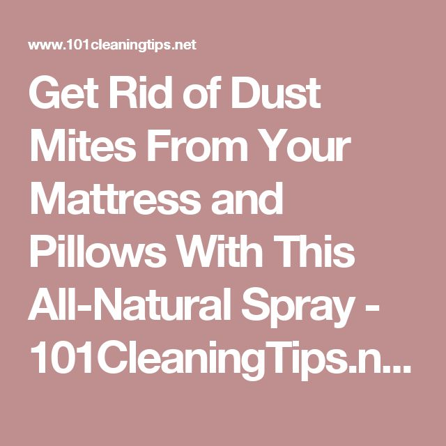 The 25 Best Dust Mites Ideas On Pinterest Mattress