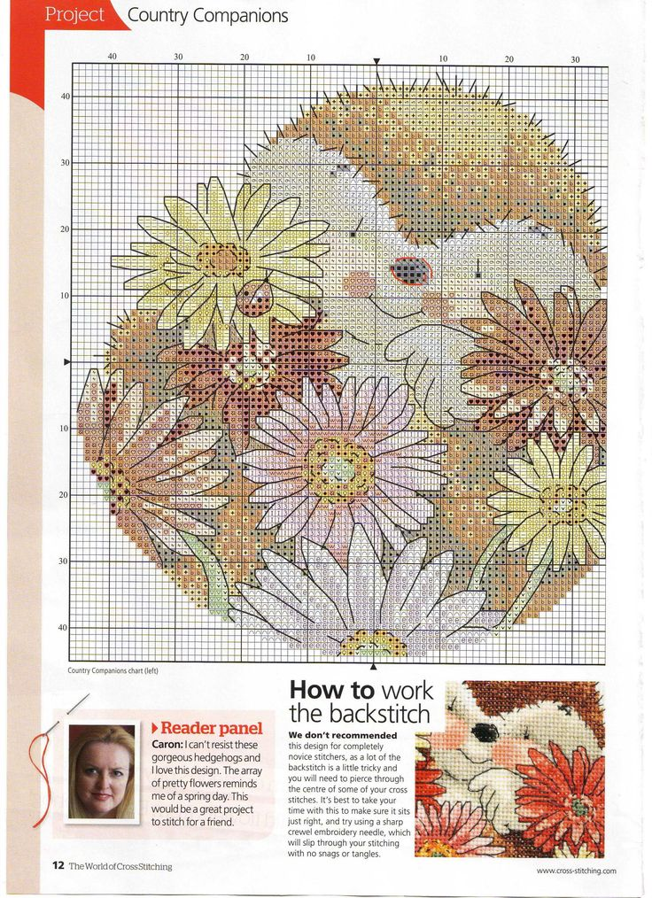 Fresh From The Country (Country Companions) From The World Of Cross Stitching N°175 2011 3 of 4
