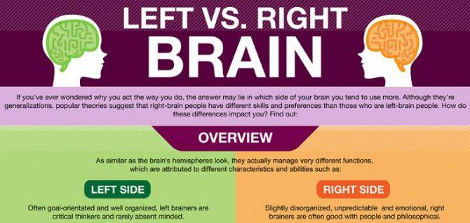 Hjärnan är fantastisk, det vet vi alla. Men vad är skillnaden mellan vänster och höger hjärnhalva? Här är en infographic med lite klassisk info om halvorna