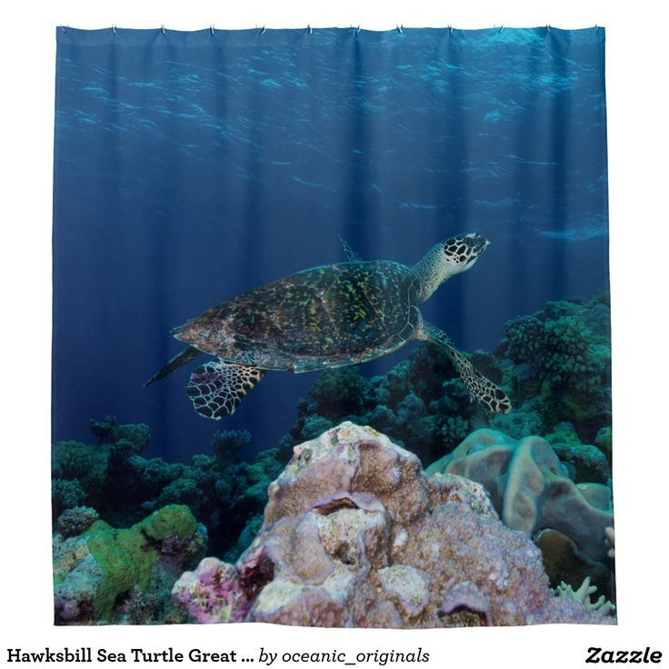 Wonderful shower curtain featuring the critically endangered Hawksbill Sea Turtle. This one is seen swimming over the beautiful coral of Australia's world heritage listed Great Barrier Reef in the crystal blue waters of the Coral Sea.