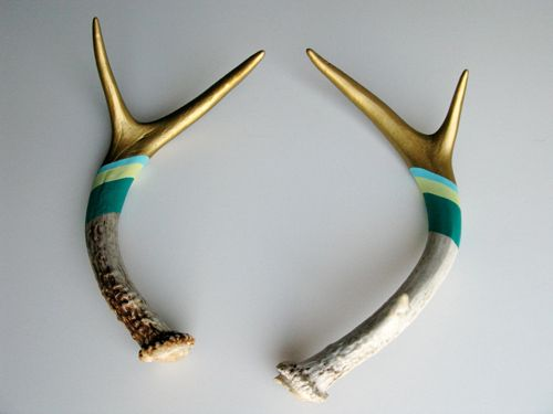 Oh hello painted antlers. You are calling to my pseudo-taxidermy loving soul.