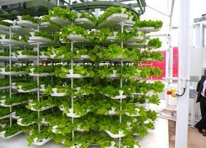 VertiCrop Processes 10,000 Plants Every 3 Days Using Vertical Hydroponic Farming | Inhabitat - Sustainable Design Innovation, Eco Architecture, Green Building