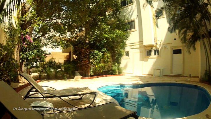 Departamento en renta. Playa del Carmen- Q. Roo