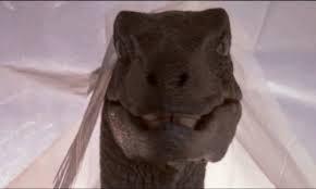 Resultado de imagen para tumblr dinosaurio