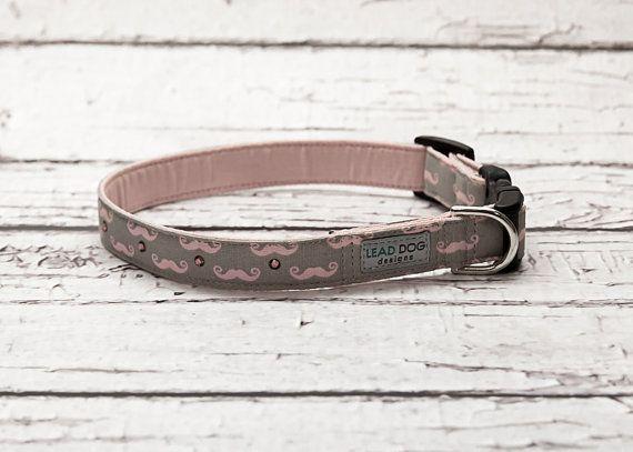 Mustache Dog Collar // Hipster Dog Collar // by LeadDogDesigns