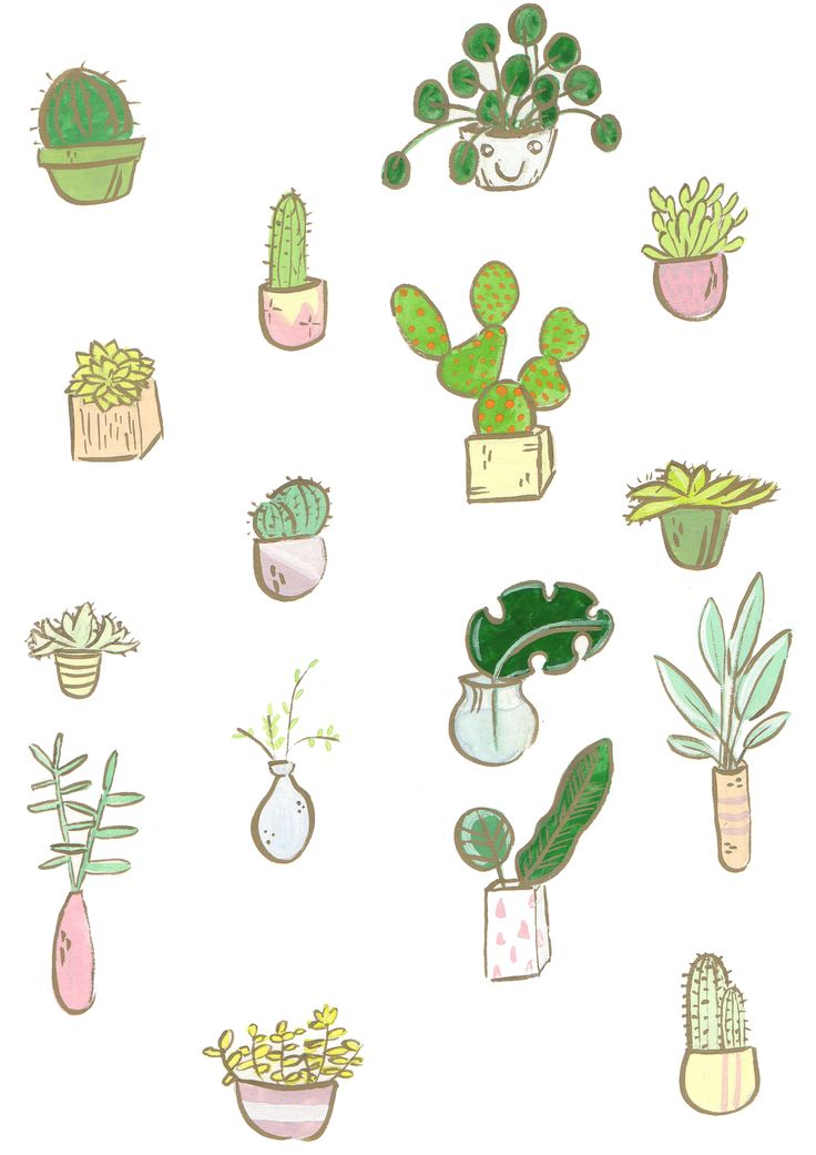 for the love of plants jessillustrates.com