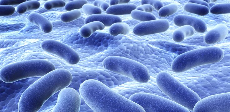 How Probiotics Help Reduce Side Effects of Radiotherapy – The Complete Guide to Natural Healing