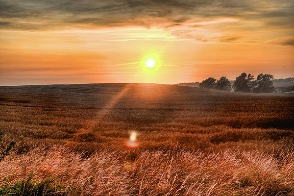 A Beginner's Introduction to Wide Angle Photography -