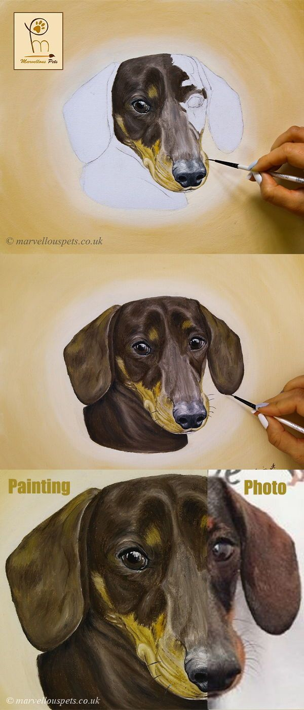 Custom Pet Portraits Dog Portrait Painting Pet Portrait Original