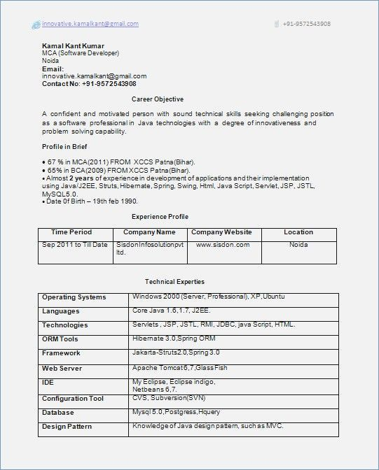 0 1 Year Experience Resume Format Career for the future Resume