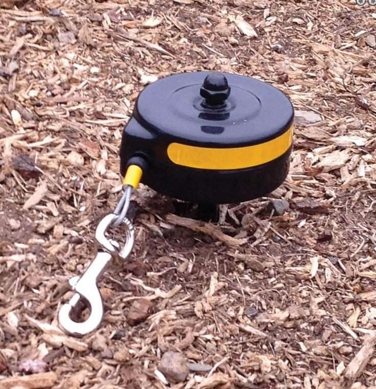 Stakes in the ground and rotates 360 degrees to keep your dog secure in your yard or at your campsite. The 15' cable retracts to prevent tripping or tangling while giving your pet over 700sq. ft. to r