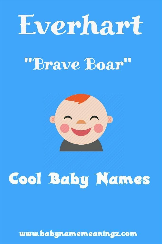 Name: Everhart Gender: 'Boy' Meaning: 'Brave boar.' Origin ...