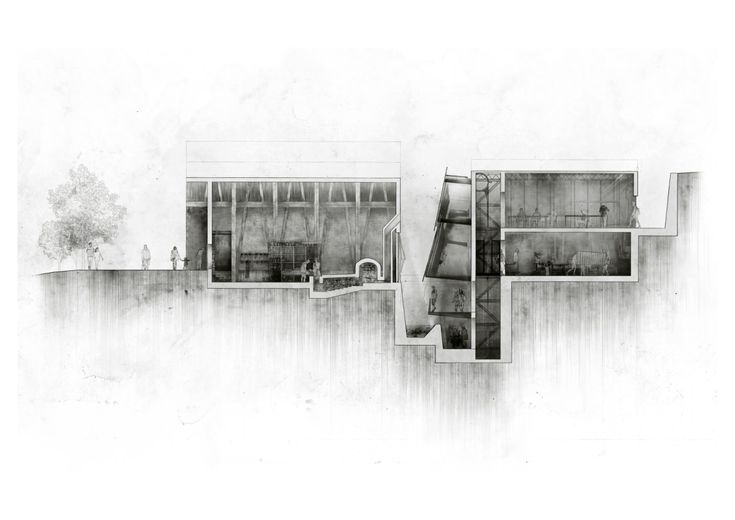 Sectional Study: depicting the 'spine' as a volumetric junction that serves to encourage a cross pollination of narratives between constituent agents; the artisan, the student, the artifact and the visitor