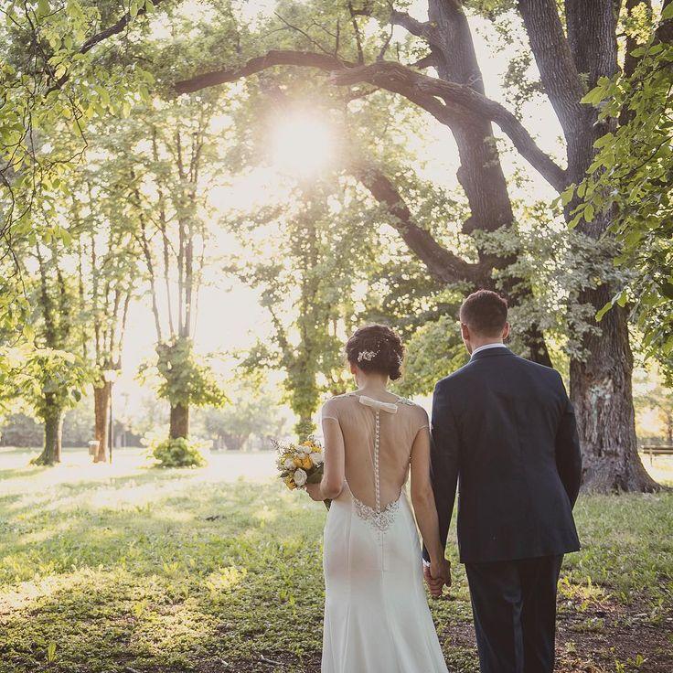Ieri è stata una giornata decisamente dura...febbre e zero voce hanno reso il mio lavoro un po' più complicato...ma ho avuto il piacere di fotografare una coppia bellissima!! Ho ancora impressi negli occhi i loro sorrisi!  Domani i primi scatti in anteprima sulla mia pagina facebook! �� Ora io vedo di riprendermi...!! �� #wedding #weddinday #weddingtime #matrimonio #weddingphotography #weddingphotographer #finalmentesole #sun #sole #bride #groom #sposi #sposa #sposo #love #together #forever…