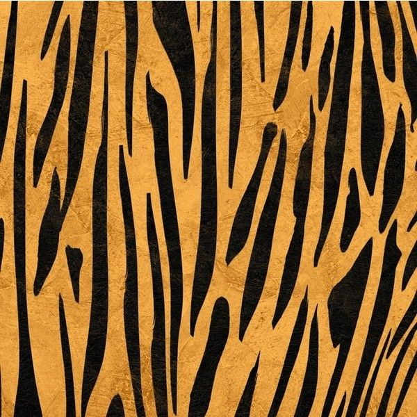 Safari Tiger Print 12 x 12 Double-Sided Paper ❤ liked on Polyvore featuring backgrounds, fillers and pattern