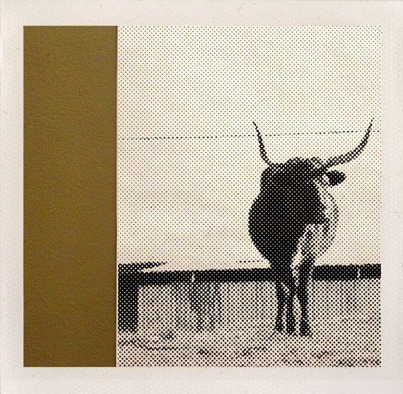 taken near the top of the world - along my childhood bus route, the sole bull overlooked the county. with a stance of confidence, we take on whats