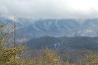 Country Bear Hideaway is a private and relaxing 1 bedroom cabin rental in Gatlinburg TN that offers everything you need for a peaceful mountain getaway.