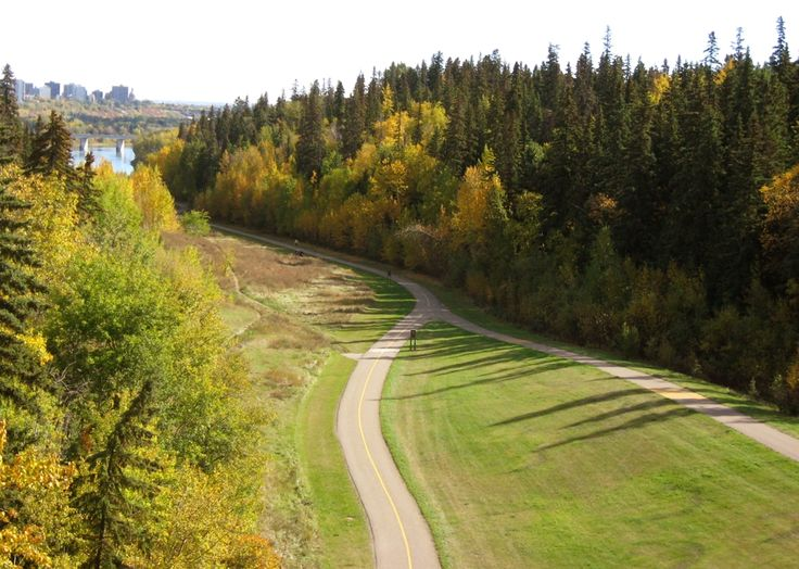 Best Time and Places to See Fall Foliage in Edmonton