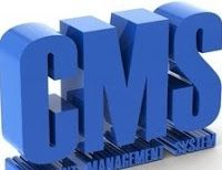 Quick Review On Top 5 CMS Platforms