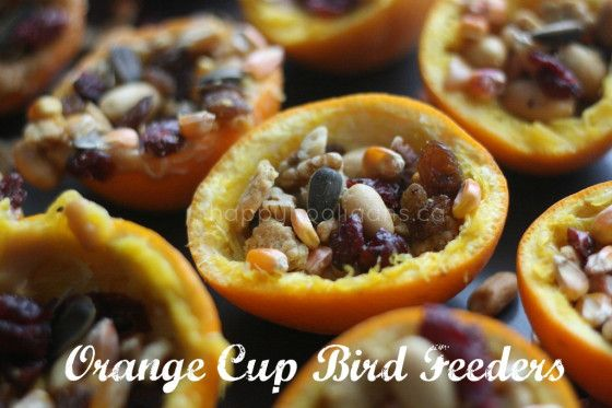 Homemade bird feeders made with orange cups, nuts and fruit - Happy Hooligans