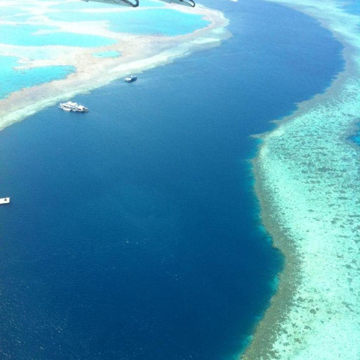 The Reef, Airlie Beach