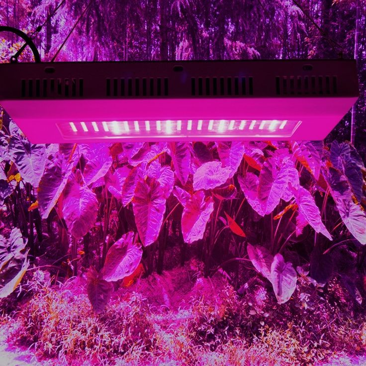 98.00$  Buy now - http://alivjo.worldwells.pw/go.php?t=32737566389 - 300W LED Led grow and flowering light full spectrum led kweeklampen grow lamp led lamp for plant 192Red+60 Blue SMD5730 chip