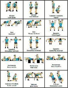 #musculation #triceps #fessiers #biceps