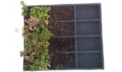 Vegblock er en superlet måde at få et grønt tag på. Se evt. mere på www.vegblock.dk