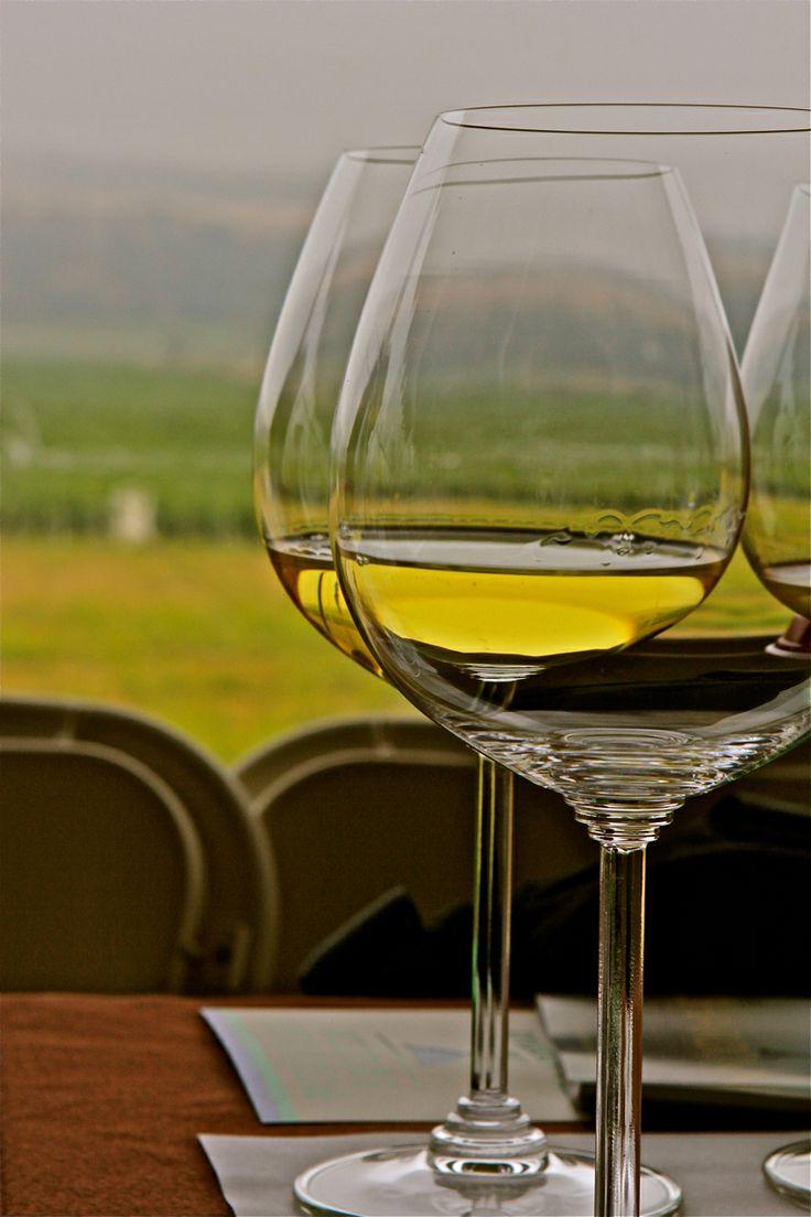 The Chardonnay Symposium 2013