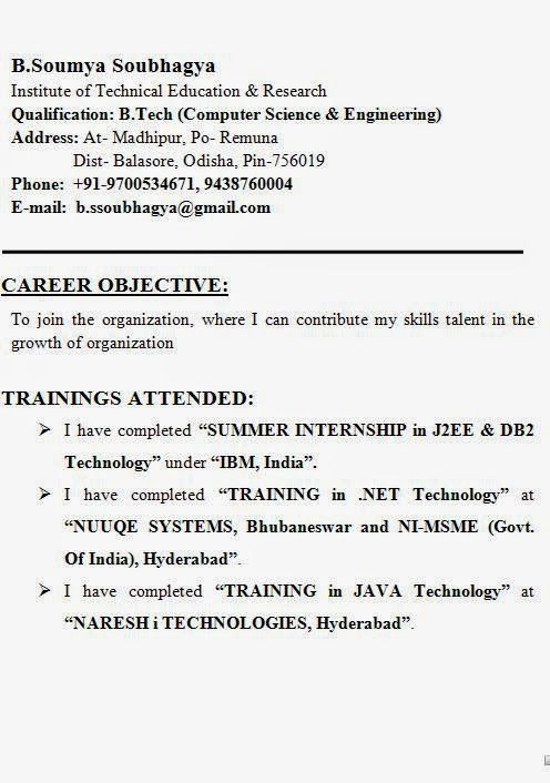 a cv layout sample template example ofexcellent curriculum