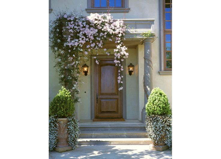 Cleaver Design Associates - front entry with vine and container garden