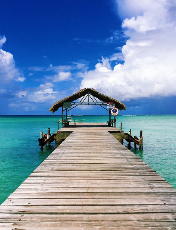Thatched Roof Jetty, Pigeon Point Beach, Trinidad and Tobago, Caribbean.