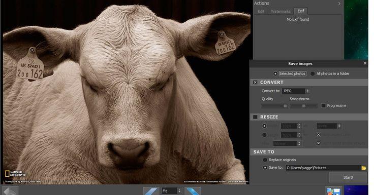 Προβάλετε και διαχειριστείτε εικόνες περιστρέψτε διαγράψτε μετατρέψτε και αλλάξτε το μέγεθος στις φωτογραφίες σας με το PhotoHandler. Μετατρέψτε το μέγεθος των εικόνων σας ρυθμίστε την ποιότητα (συμπίεση) το μέγεθος ή μετατρέψτε τις σε jpeg gif tiff png ή PSD. Μπορείτε ακόμη να προσθέσετε φωτογραφίες από την φωτογραφική σας μηχανή ή από την κάρτα SD και το PhotoHandler θα τις προσθέσει στο σκληρό σας δίσκο αυτόματα. Ωστόσο εκτός από την επεξεργασία μεμονωμένων φωτογραφιών σας επιτρέπει να…