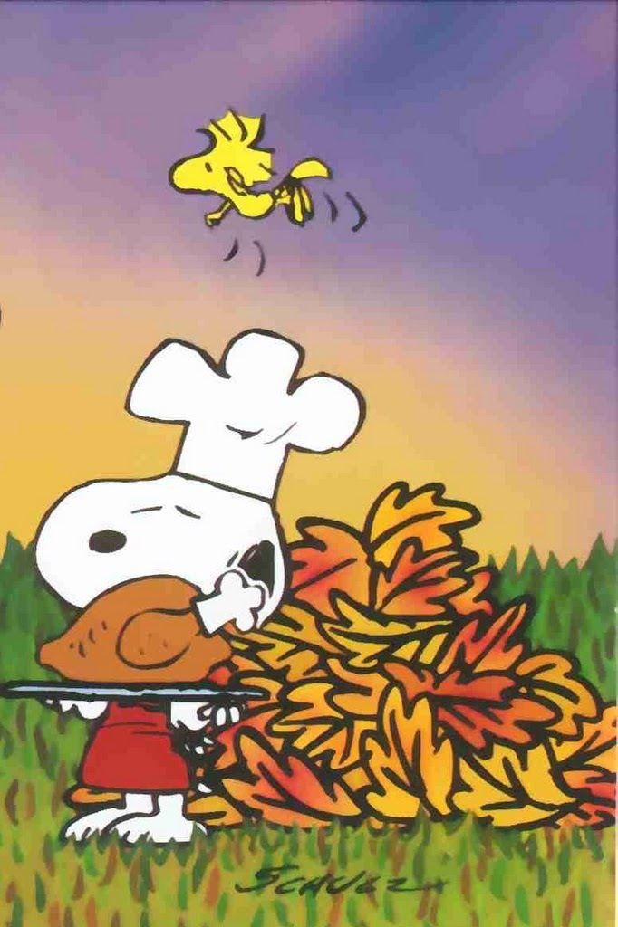 snoopy, woodstock, peanuts, thanksgiving, cartoon, art, backgrounds, iphone, smart phone, htc, android
