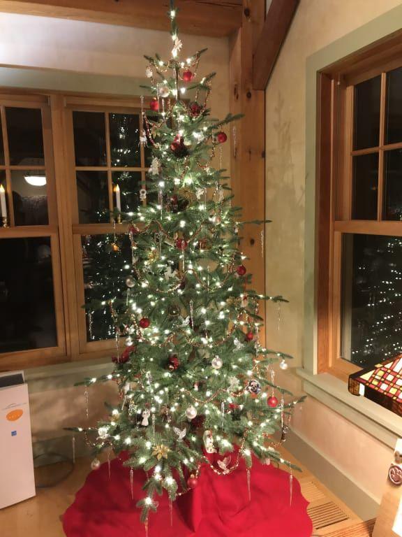 Alpine Balsam Fir Christmas Tree Balsam Hill Balsam Fir Christmas Tree Fir Christmas Tree Balsam Fir