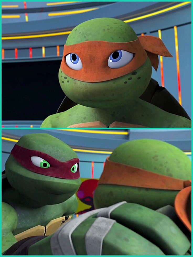 I love the relationship between Mikey and Raph, they argue a lot, but they love each other