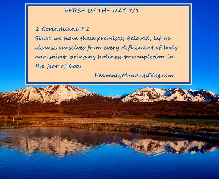 VERSE OF THE DAY 7/1 2 Corinthians 7:1 Since we have these promises, beloved, let us cleanse ourselves from every defilement of body and spirit, bringing holiness to completion in the fear of God.  #verseoftheday #bibleverse #bible #biblestudy #verse #scripture #corinthians #God #Lord #Jesus #JesusChrist #Christ #Christian #Christianity #ChristianMom #ChristianDad #ChristianWife #ChristianHusband #ChristianWoman #ChristianMan