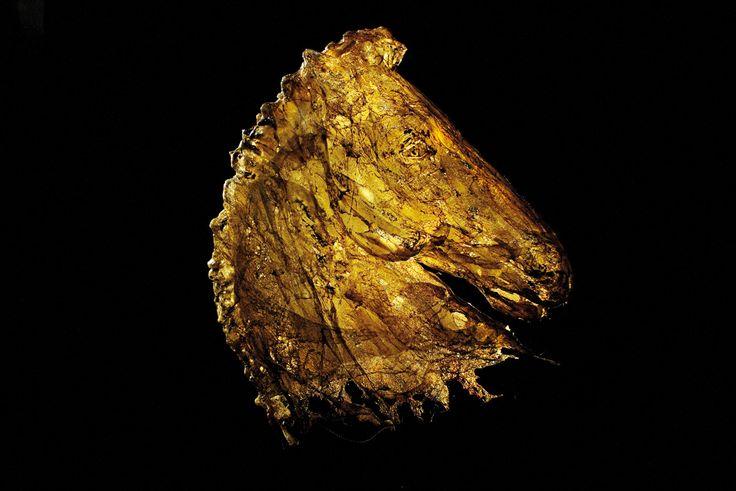Testa di cavallo scultura testa di cavallo fusione di policarbonato - 2008 - 70x95x40 cm Ph. Maria Vittoria Gozio