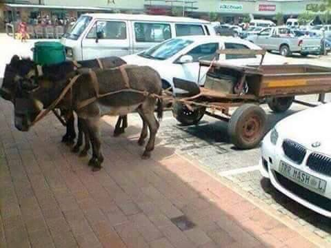 Just an ordinary day at the supermarket. Limpopo, South Africa
