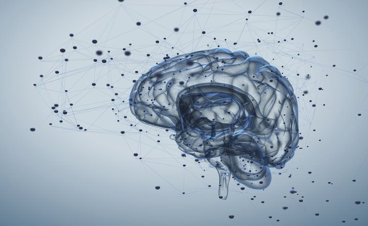 Certain brain structures related to emotion and reward are smaller in people with the disorder, new research finds.