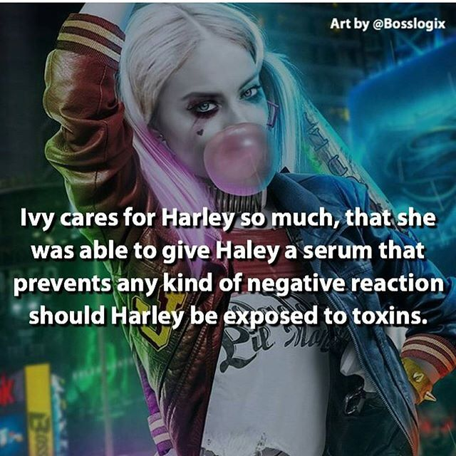 Cool! They should have put a picture of Harley and Ivy instead of Whorley Quimm