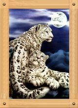 Counted Cross-Stitch Kits Kit Home Decor D079 Blue Night Under The Moon Snow Leopard 11CT Embroidery On Needlework Cross Stitch(China (Mainland))