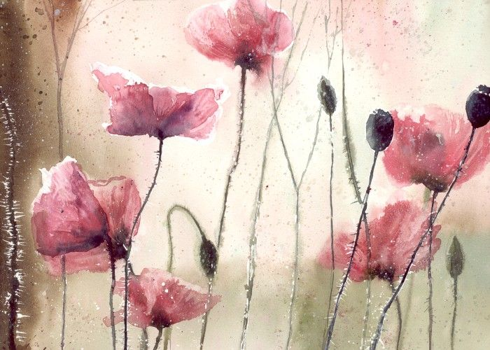 Poppys and light by nibybiel on DeviantArt