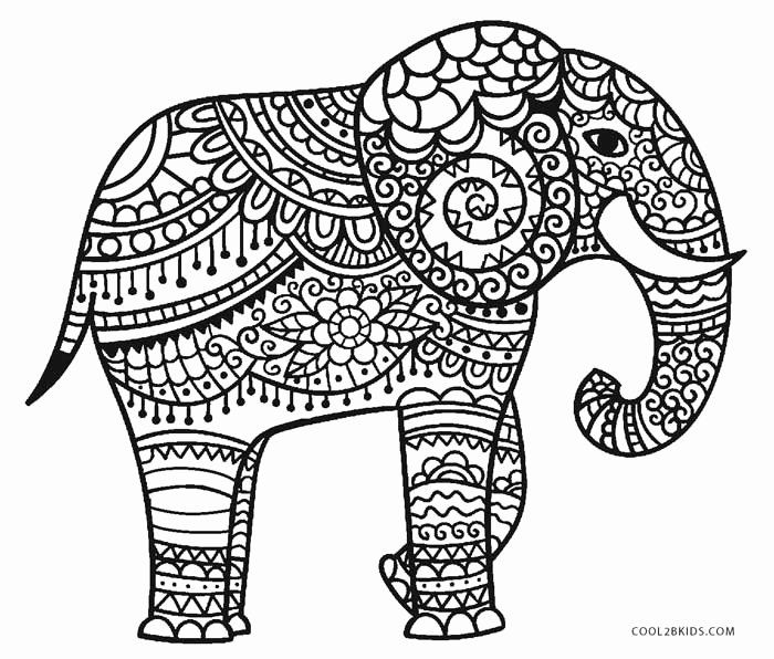 Elephant Coloring Book For Adults Elegant Free Printable Elephant Coloring Pages For Kids Hellbo Elephant Coloring Page Dolphin Coloring Pages Coloring Pages