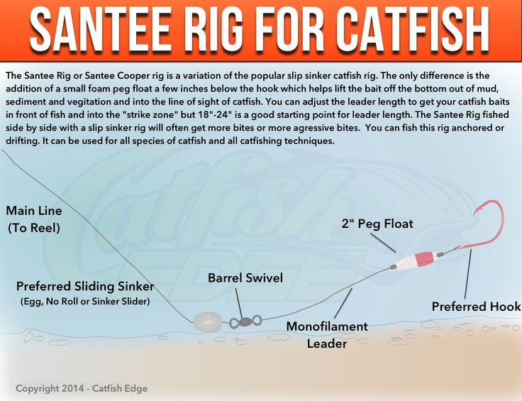 how to set up a pole for catfish